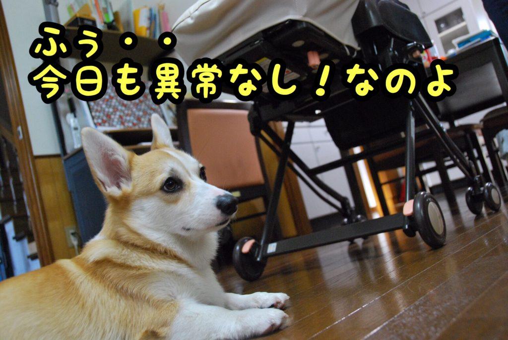 2016-11-03-05-58-43