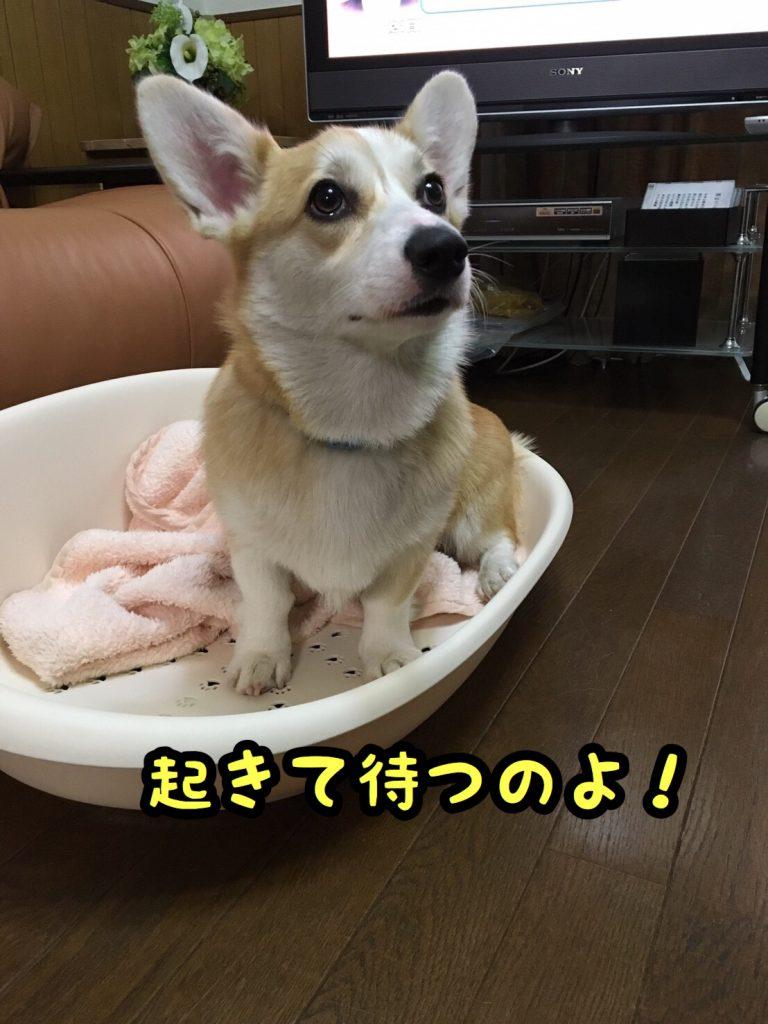 2016-12-08-22-03-01