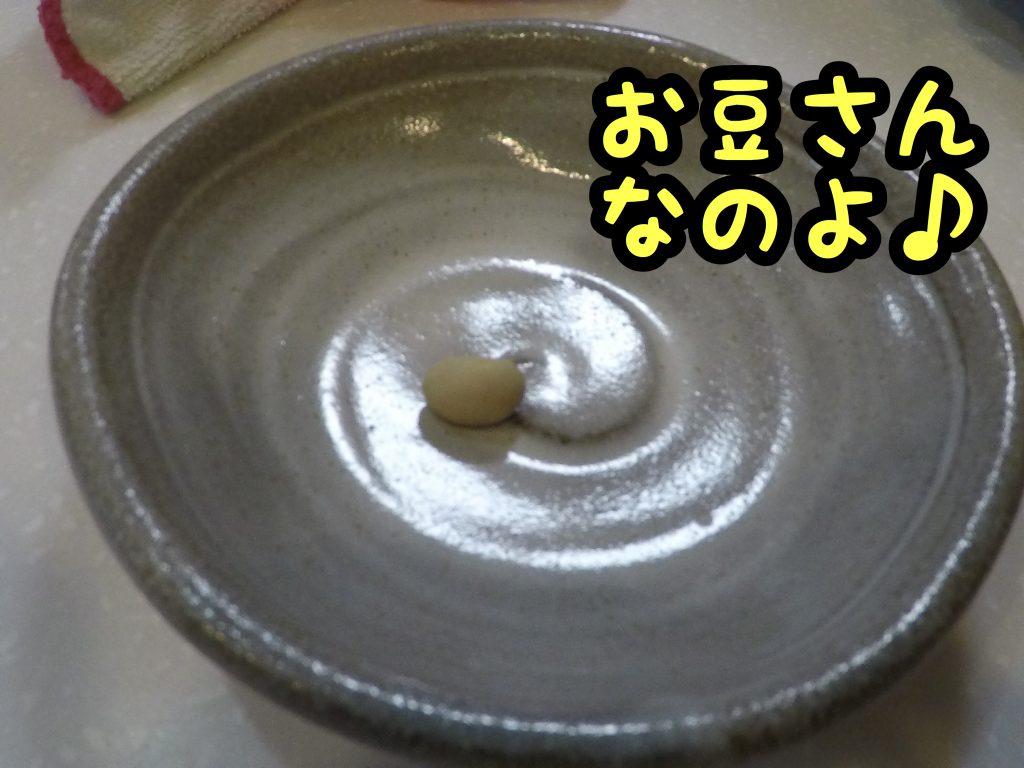 2017-02-05 05.49.33